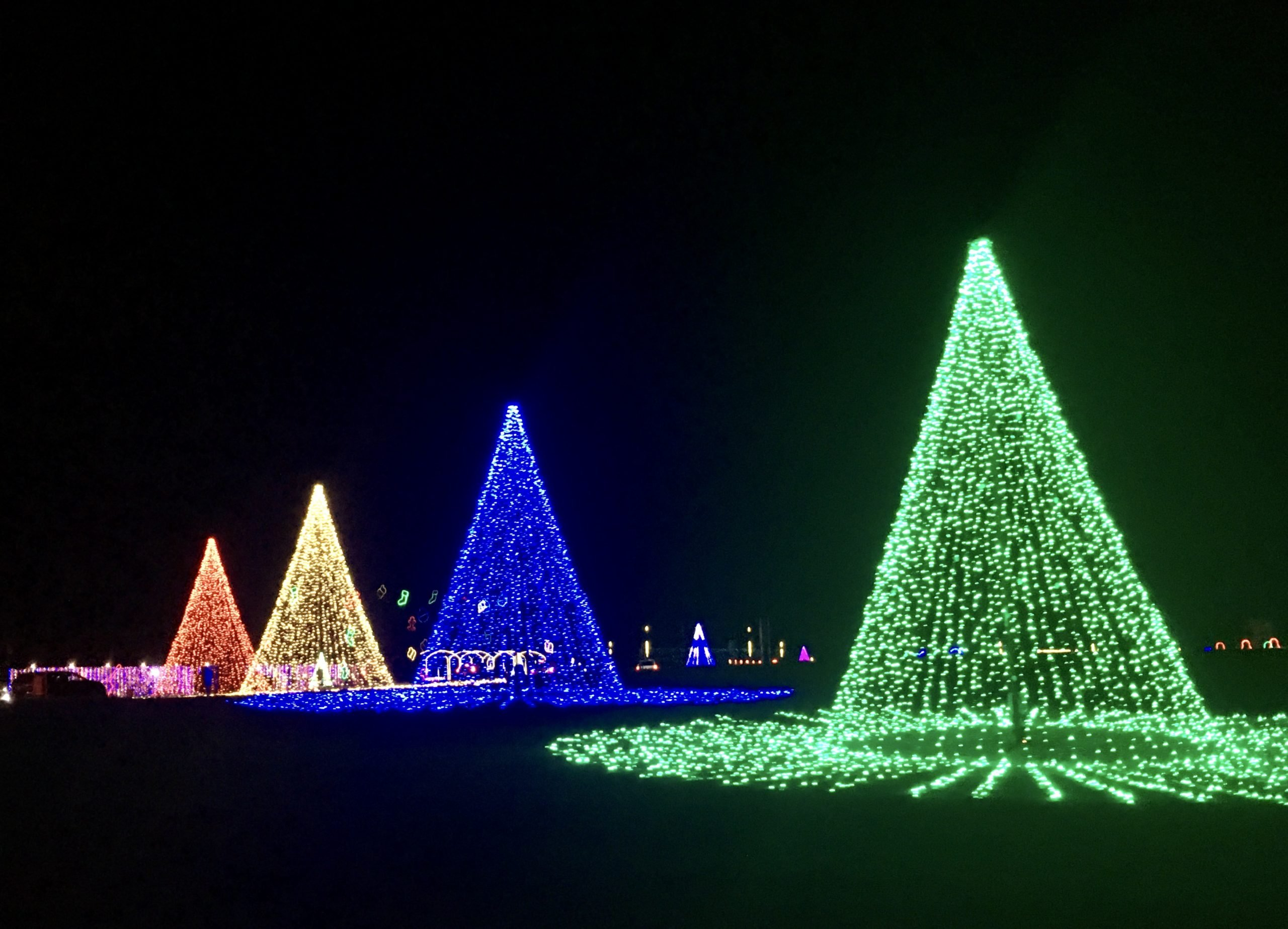 Dancing Lights of Christmas 2020 photo
