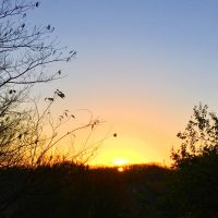 Easter, an Acrostic Poem